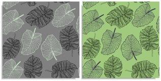 Een vectorreeks van een naadloos patroon met twijgen van wildernissen gaat weg Hand-drawn op blad bij de grafische stijl Lijnen s royalty-vrije stock foto's