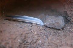Een veer en een steen in een gat stock foto