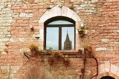 Een venster met bloem Stock Foto