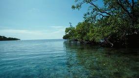 Een ver eiland in Raja Ampat, Indonesië wordt omzoomd door mangrovebos royalty-vrije stock foto's