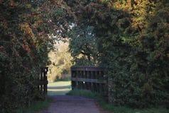 Een verbazende poort aan de tuin Stock Afbeeldingen