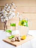Een verjongende drank, een cocktail, thee, water met citroen, inbet, Stock Foto's