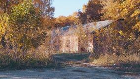 Een verlaten huis in het hout stock footage
