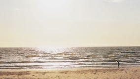 Een verre mening van een jong meisje dat zich op een sun-lit zandig strand bekijkend golven die haar voeten behandelen bevindt stock footage