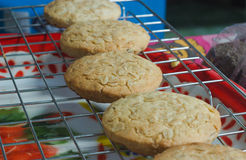 Een vers gebakken suikerkoekjes bij het koelen van rek Stock Foto