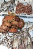 Een verscheidenheid van vissen en zeevruchten voor verkoop bij de vissershaven van Essaouira in Marokko Royalty-vrije Stock Foto's