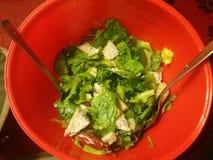 Een verse groene salade Royalty-vrije Stock Afbeeldingen