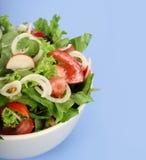 Een verse salade Royalty-vrije Stock Foto's