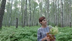 Een verzamelt de jonge vrouwengangen door een berkbos paddestoelen, bloemen, bessen in een mand stock video