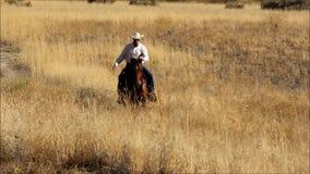 Een video van een cowboy die zijn paard berijden bij een sprong in een weide van gouden gras