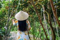 Een Vietnamese vrouw in traditionele kleding stock foto