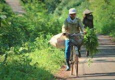 Een Vietnamese vrouwen berijdende fiets Stock Fotografie
