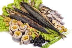 Een vis die met groenten wordt geplaatst Stock Foto's