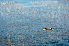 Een visser die door de kust intertidal streek van Xiapu gaan stock afbeeldingen