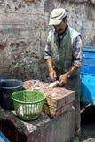 Een visser maakt een vis bij de bezige haven van Essaouira in Marokko schoon Stock Fotografie