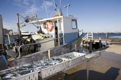 Een een Visserijtreiler en Vangst royalty-vrije stock foto