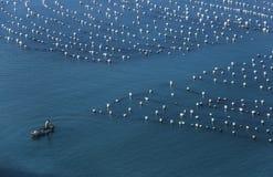 Een vissersboot op het overzees Stock Afbeeldingen