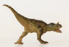 Een Vlees die Carnotaurus-Dinosaurus, Vlees eten die Stier eten Royalty-vrije Stock Foto's