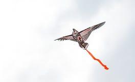 Een vlieger bij de donkere hemel Royalty-vrije Stock Afbeelding