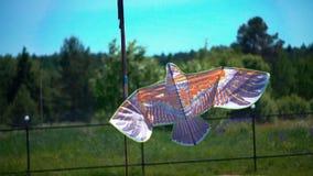 Een vlieger in de vorm van een vogel vliegt in de hemel stock video