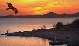 Een Vlieger die over Meer Nasser met een zonsondergang en een bergachtergrond vliegen stock foto