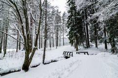 Een voetgangersbrug over een kleine die rivier van sneeuw in bos wordt behandeld royalty-vrije stock afbeelding