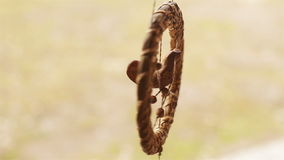 Een vogel van stro het hangen als herinnering wordt gemaakt die stock video