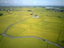 Een vogelperspectief van een curvy landweg die door gouden padievelden in Yilan Ilan winden stock fotografie