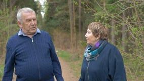 Een volwassen paar die op een gang in het park spreken Zweer, kom de verhouding te weten stock videobeelden