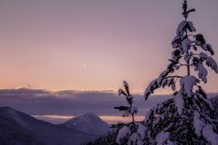 Een vonderful Januari-dag Mooie de winterlandschappen met zonsondergang royalty-vrije stock afbeeldingen