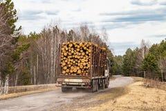 Een vrachtwagen met het bos geeft de weg, industrieel vervoer van door pijnboom royalty-vrije stock foto