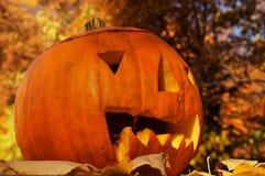 Een vriendschappelijke het lachen Halloween pompoen Royalty-vrije Stock Afbeeldingen