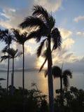 Een vroege ochtendzonsopgang in Australië Royalty-vrije Stock Foto's