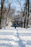 Een vrouw die in de sneeuw loopt Stock Afbeeldingen