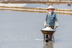 Een vrouw die een kruiwagen van zout duwen bij het zoute gebied van Hon Khoi Stock Fotografie