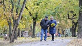 Een vrouw en een man die langs de steeg in de herfstpark lopen stock video