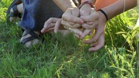 Een vrouw en een meisje maken een grappig schepsel van hun vier handen stock video