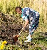 Een vrouw graaft een tuin met een schop royalty-vrije stock foto's