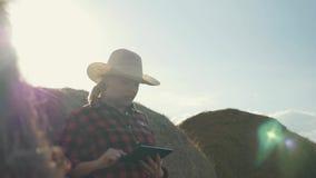 Een vrouw is een landbouwer met een tablet bij een hooiberg farming Voorbereiding van veevoeder voor de winter stock footage
