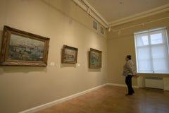 Een vrouw let op de schilderijen royalty-vrije stock foto