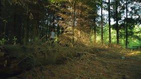 Een vrouw loopt door een dicht bos op een zonnige dag stock videobeelden