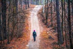 Een vrouw loopt langs een weg in een park in een bos in de herfst stock foto's