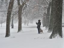 Een vrouw met de hond Stock Foto's