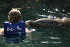 Een vrouw met een dolfijn in Mexico stock foto's