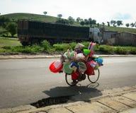 Een vrouw met een fiets op landelijk in Moc Chau stock afbeelding