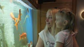 Een vrouw met een klein meisje in haar wapens die zich bij een groot aquarium met nieuwsgierigheid bevinden die nadenken zwemmend stock videobeelden
