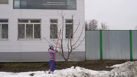 Een vrouw snijdt een appelboom op een bewolkte de lentedag stock videobeelden