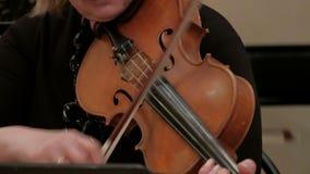 Een vrouw speelt een mooie vioolmuziek Handen van de close-up de vrouwelijke violist stock video