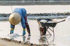 Een vrouw verzamelt zout bij de zoute gebieden van Hon Khoi in Nha Trang, V Stock Afbeelding