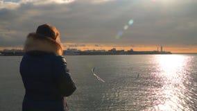 Een vrouw voedt meeuwen bij zonsondergang stock video